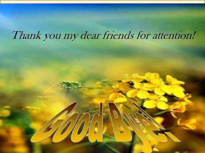 Thank you my dear friends for attention!