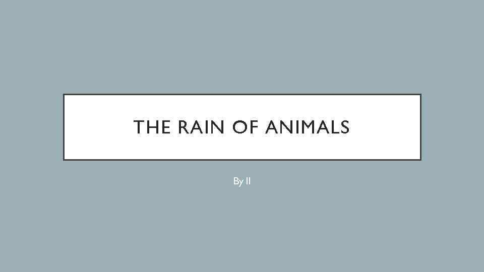 THE RAIN OF ANIMALS By ll