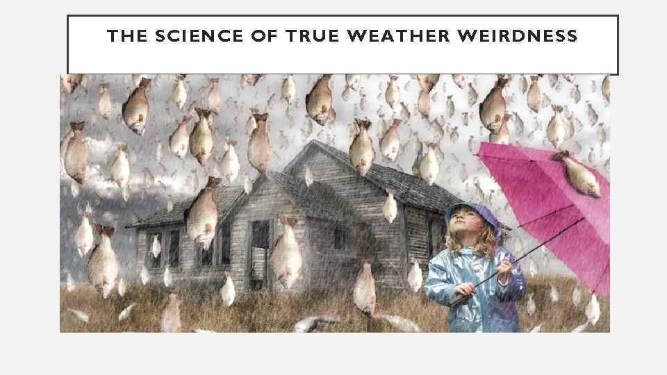 THE SCIENCE OF TRUE WEATHER WEIRDNESS
