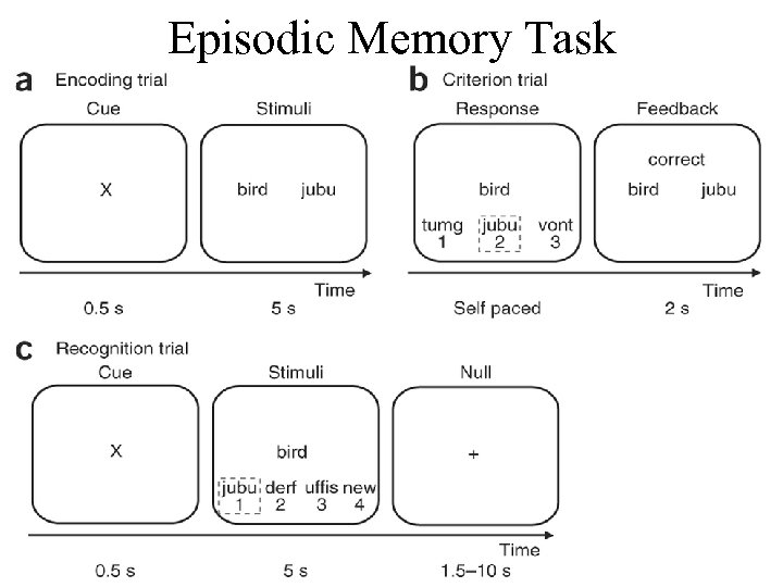 Episodic Memory Task