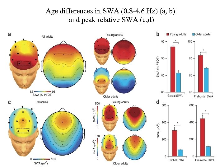Age differences in SWA (0. 8 -4. 6 Hz) (a, b) and peak relative