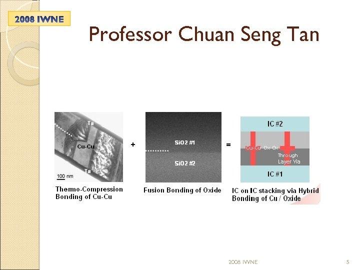 Professor Chuan Seng Tan 2008 IWNE 5