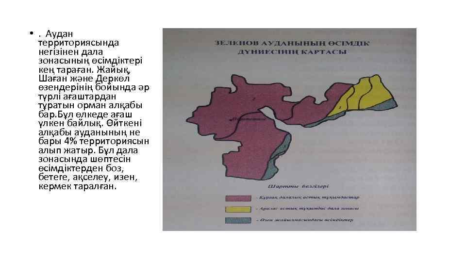 • . Аудан территориясында негізінен дала зонасының өсімдіктері кең тараған. Жайық, Шаған және