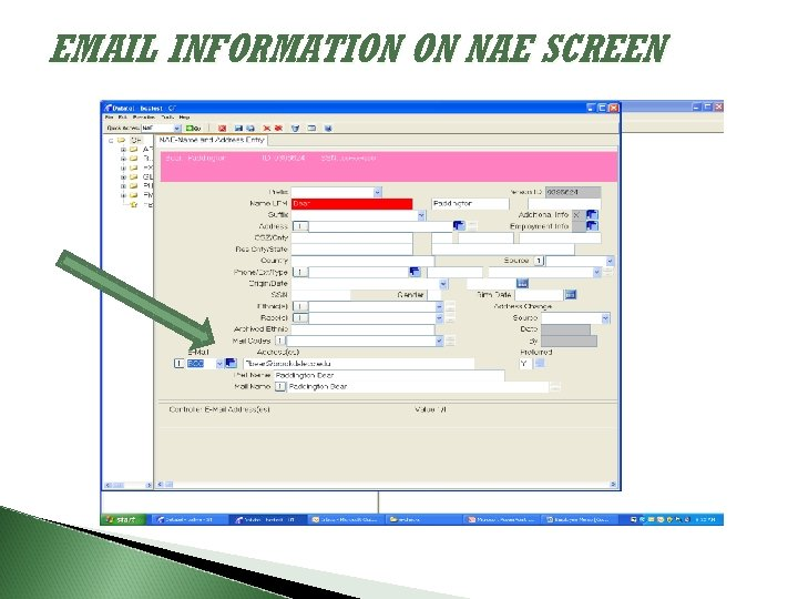 EMAIL INFORMATION ON NAE SCREEN