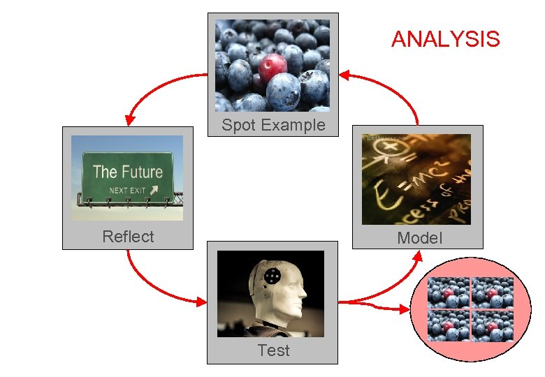 ANALYSIS Spot Example Reflect Model Test