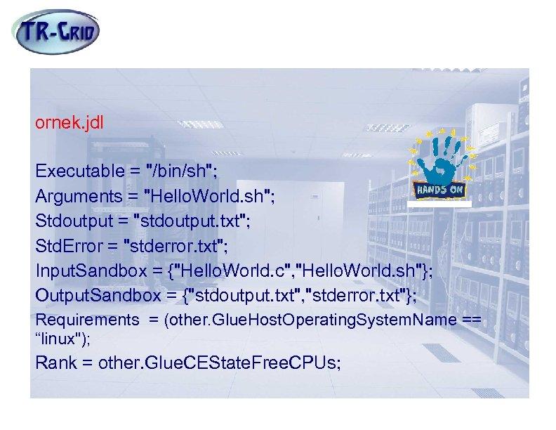 Örnek JDL Dosyası ornek. jdl Executable =