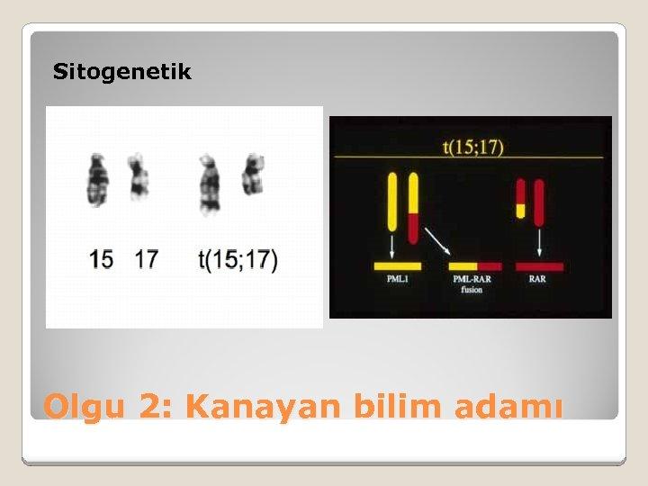 Sitogenetik Olgu 2: Kanayan bilim adamı