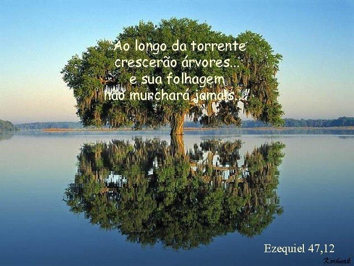 """""""Ao longo da torrente crescerão árvores. . . e sua folhagem não murchará jamais."""