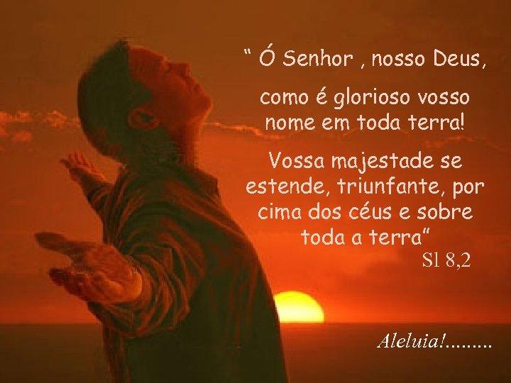 """"""" Ó Senhor , nosso Deus, como é glorioso vosso nome em toda terra!"""