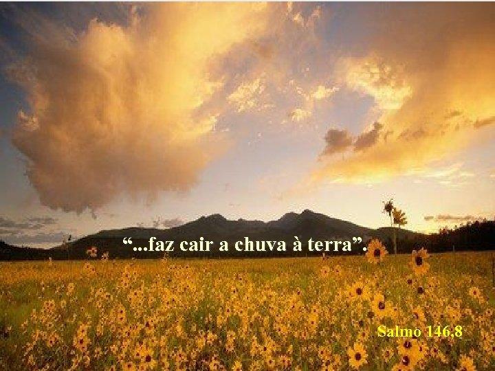 """"""". . . faz cair a chuva à terra"""". Salmo 146, 8"""