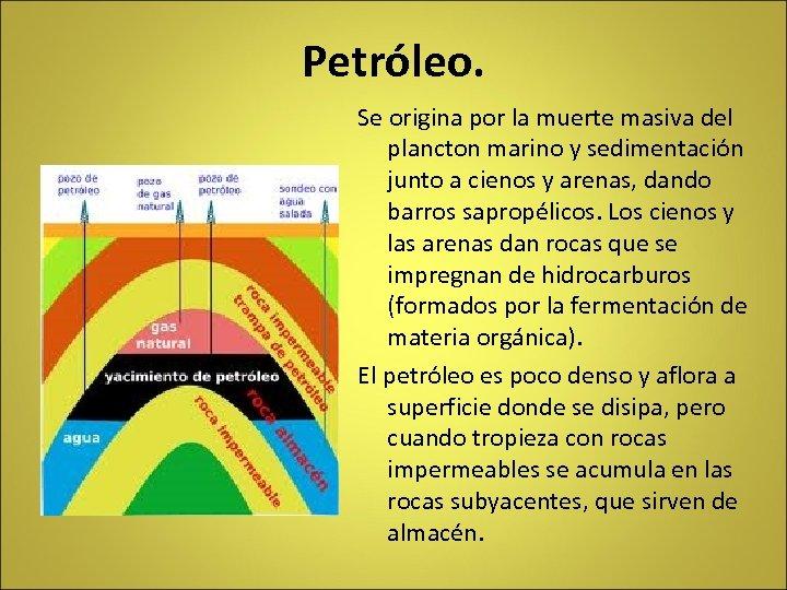 Petróleo. Se origina por la muerte masiva del plancton marino y sedimentación junto a