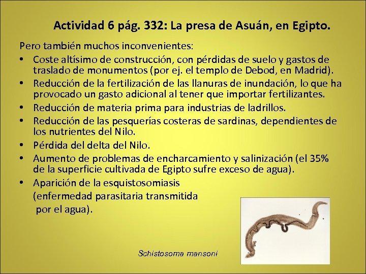 Actividad 6 pág. 332: La presa de Asuán, en Egipto. Pero también muchos inconvenientes: