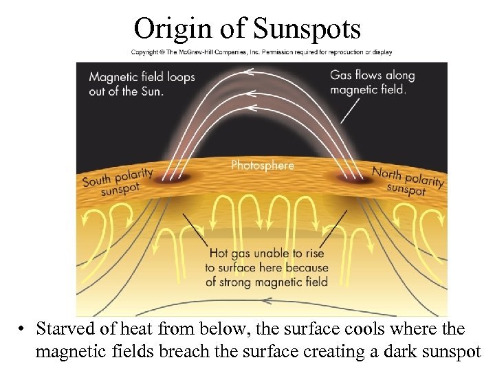 Origin of Sunspots • Starved of heat from below, the surface cools where the