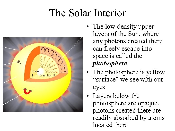 The Solar Interior • The low density upper layers of the Sun, where any