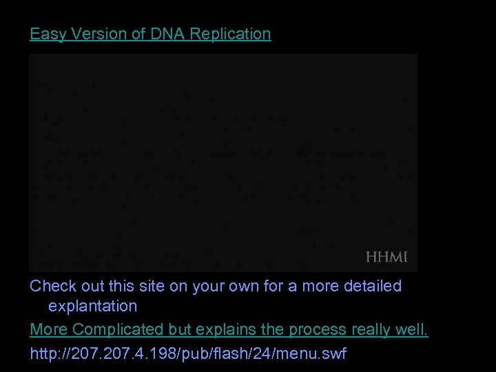 Easy Version of DNA Replication Check out this site on your own for a
