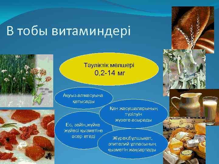В тобы витаминдері Тәуліктік мөлшері 0, 2 -14 мг Ақуыз алмасуына қатысады Ес, зейін,