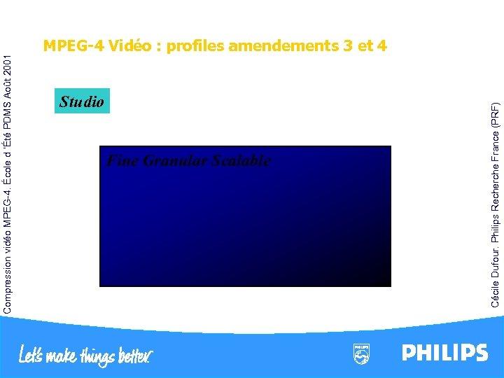 Studio FGS Fine Granular Scalable Interlace B-VOP MPEG-2 Quantification 1/4 pel GMC AC/DC