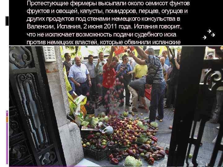 Протестующие фермеры высыпали около семисот фунтов фруктов и овощей, капусты, помидоров, перцев, огурцов и