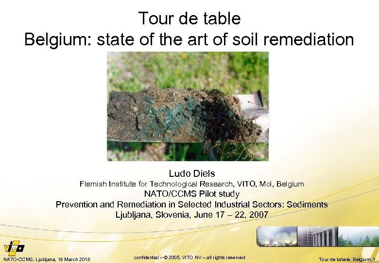 Tour de table Belgium: state of the art of soil remediation Ludo Diels Flemish