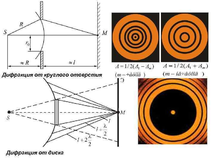 Дифракция от круглого отверстия Дифракция от диска