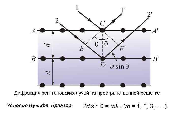 Дифракция рентгеновских лучей на пространственной решетке Условие Вульфа–Брэггов 2 d sin θ = mλ