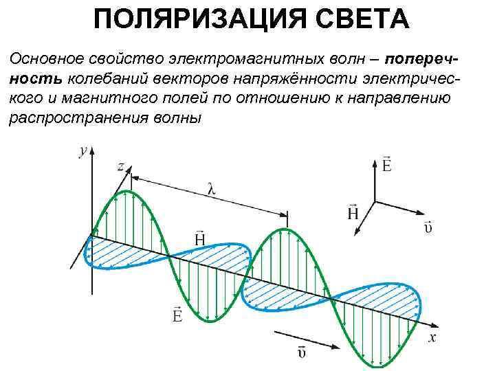 ПОЛЯРИЗАЦИЯ СВЕТА Основное свойство электромагнитных волн – поперечность колебаний векторов напряжённости электрического и магнитного
