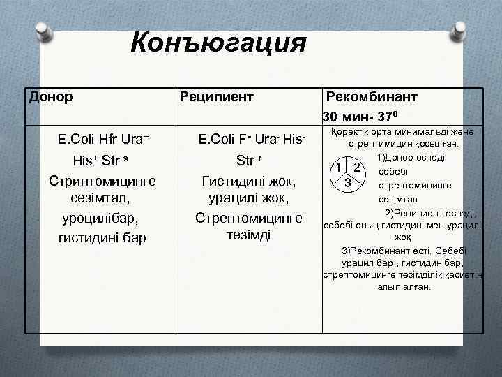 Конъюгация Донор Реципиент E. Coli Hfr Ura+ E. Coli F- Ura- His+ Str s