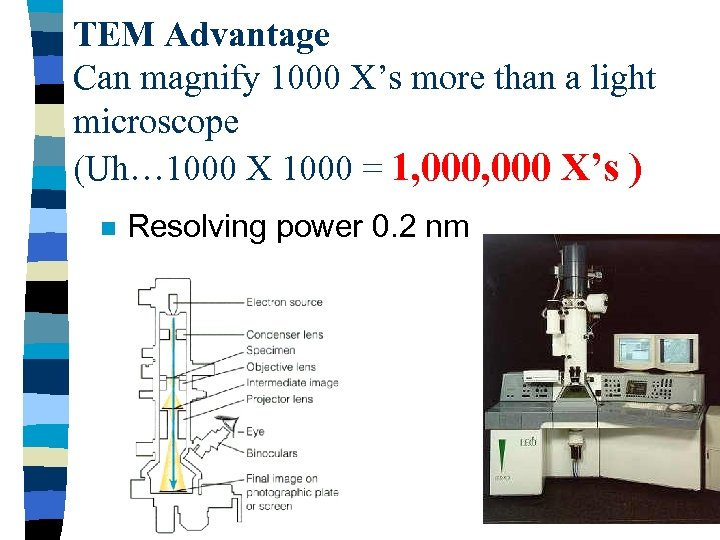 TEM Advantage Can magnify 1000 X's more than a light microscope (Uh… 1000 X