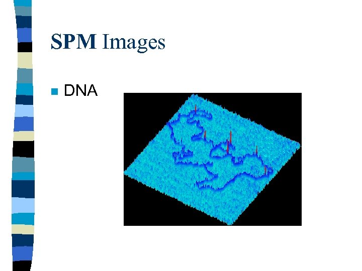 SPM Images n DNA