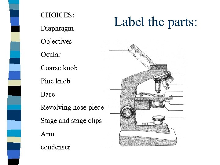 CHOICES: Diaphragm Objectives Ocular Coarse knob Fine knob Base Revolving nose piece Stage and