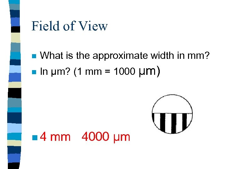 Field of View n What is the approximate width in mm? n In µm?