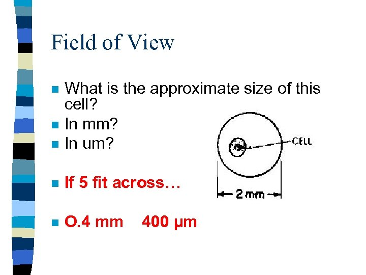 Field of View n What is the approximate size of this cell? In mm?