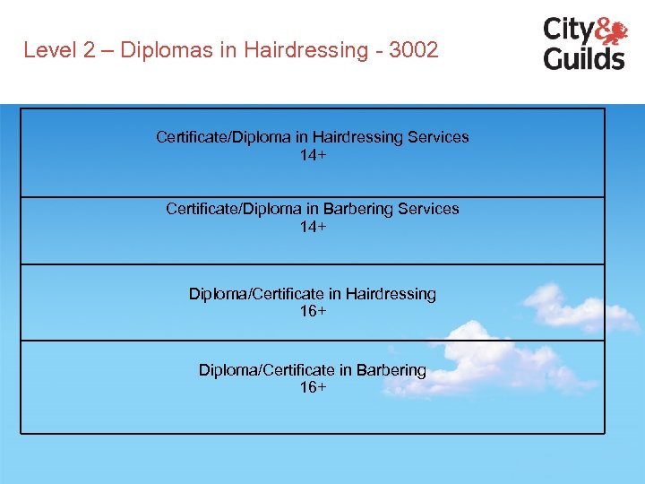 Level 2 – Diplomas in Hairdressing - 3002 Certificate/Diploma in Hairdressing Services 14+ Certificate/Diploma
