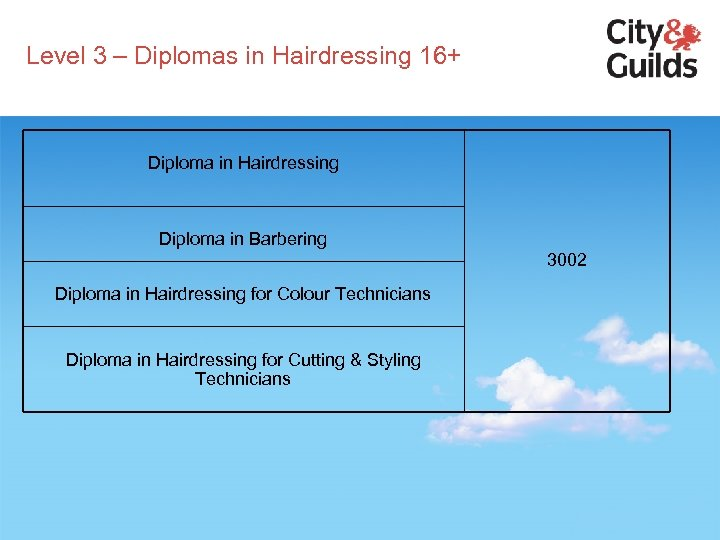 Level 3 – Diplomas in Hairdressing 16+ Diploma in Hairdressing Diploma in Barbering 3002