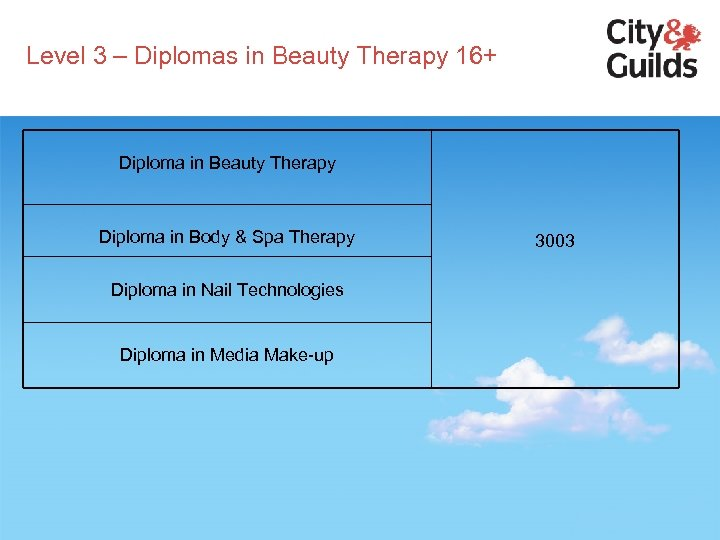 Level 3 – Diplomas in Beauty Therapy 16+ Diploma in Beauty Therapy Diploma in
