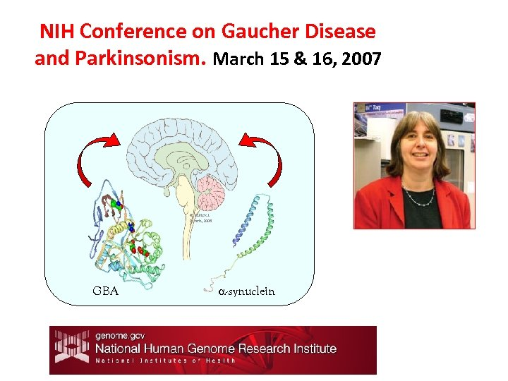 NIH Conference on Gaucher Disease and Parkinsonism. March 15 & 16, 2007 © Patrick