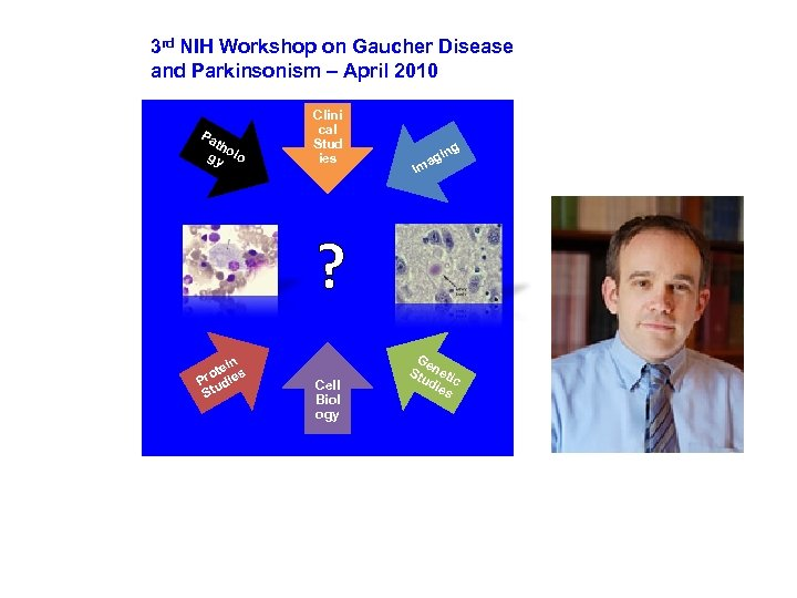 3 rd NIH Workshop on Gaucher Disease and Parkinsonism – April 2010 Pa th