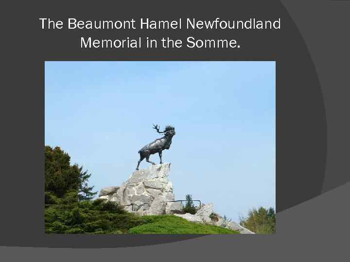 The Beaumont Hamel Newfoundland Memorial in the Somme.