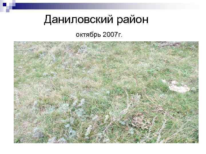 Даниловский район октябрь 2007 г.