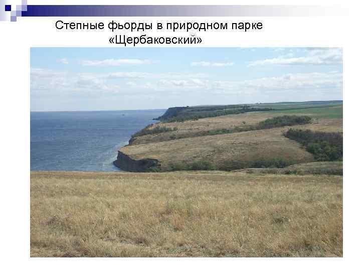 Степные фьорды в природном парке «Щербаковский»
