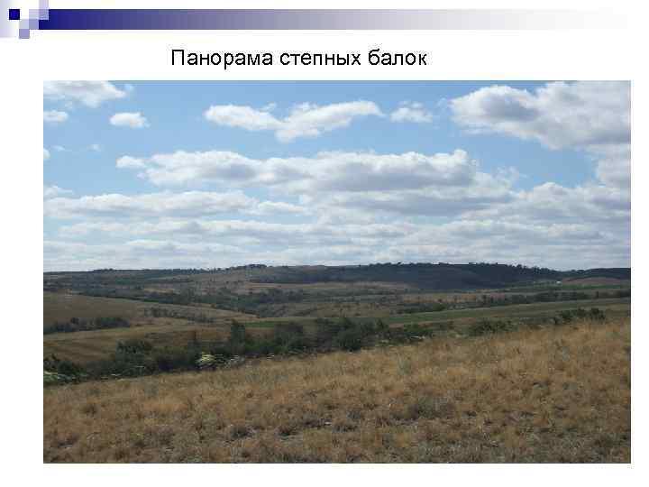 Панорама степных балок