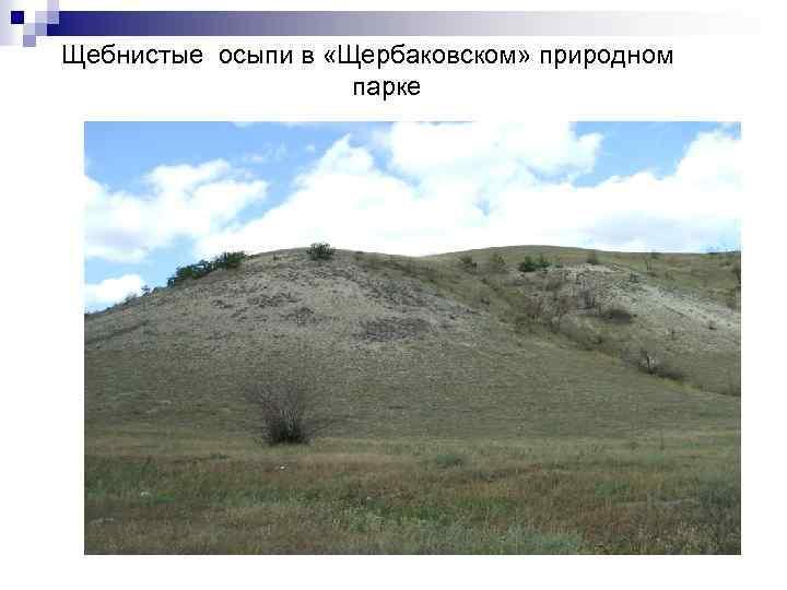 Щебнистые осыпи в «Щербаковском» природном парке