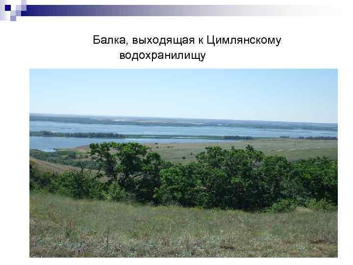 Балка, выходящая к Цимлянскому водохранилищу