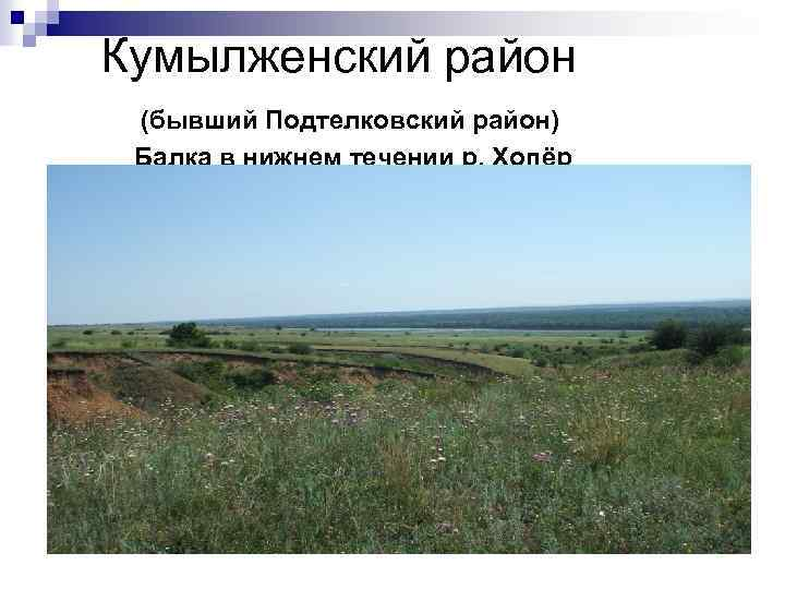 Кумылженский район (бывший Подтелковский район) Балка в нижнем течении р. Хопёр