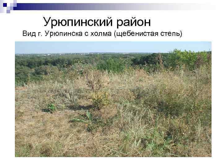 Урюпинский район Вид г. Урюпинска с холма (щебенистая степь)