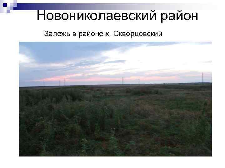 Новониколаевский район Залежь в районе х. Скворцовский