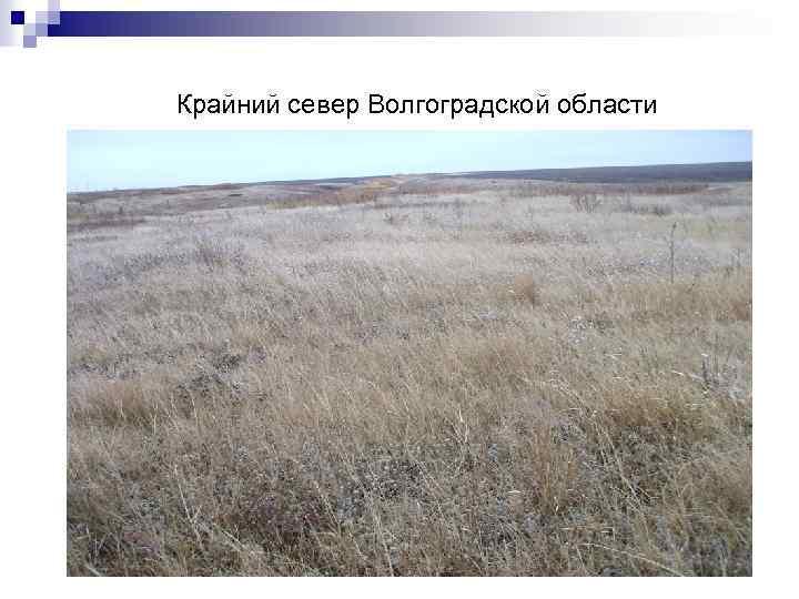 Крайний север Волгоградской области
