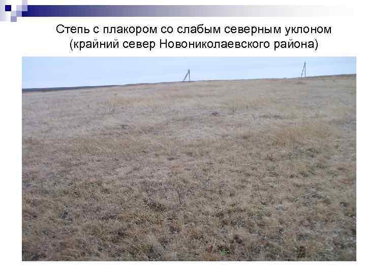Степь с плакором со слабым северным уклоном (крайний север Новониколаевского района)