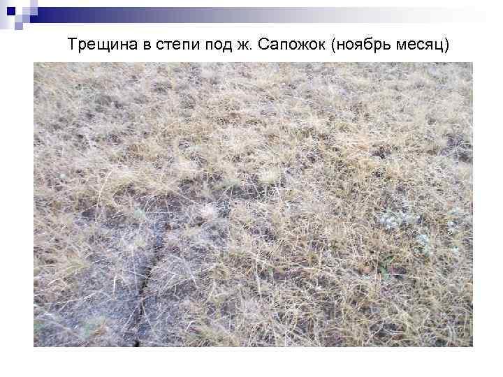Трещина в степи под ж. Сапожок (ноябрь месяц)