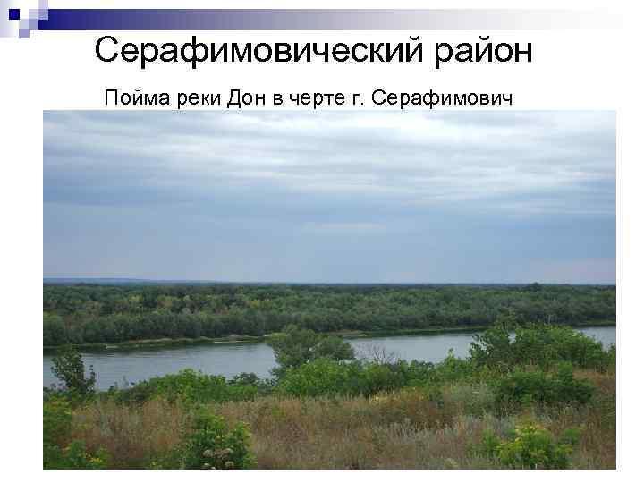 Серафимовический район Пойма реки Дон в черте г. Серафимович